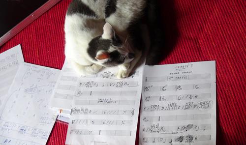 """Partitions (Enregistrement des albums """"La Barque ailée et l'Albatros"""")"""